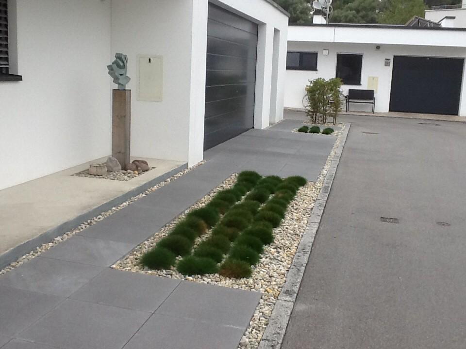 strohblume strohblumen mischung kiepenkerl helichrysum bracteatum g nstig aus der baumschule. Black Bedroom Furniture Sets. Home Design Ideas